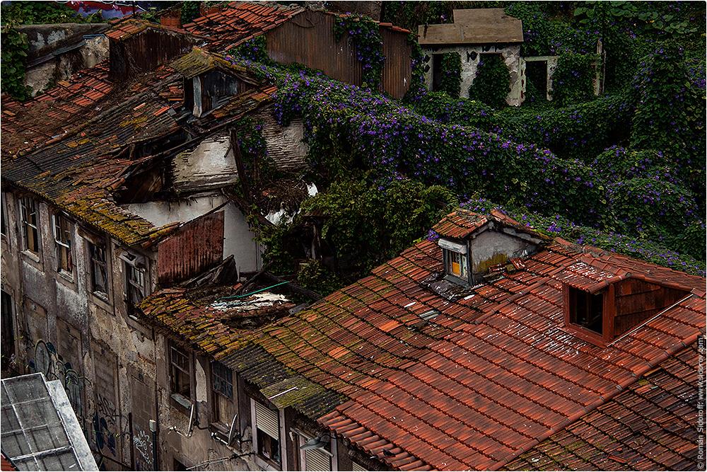 Старый город Порто, Поргугалия. (The Old City of Porto.)