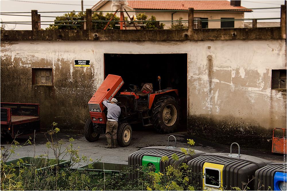 Сельское хозяйство. Трактор. Поргугалия. (Agriculture. Tractor. Portugal.)